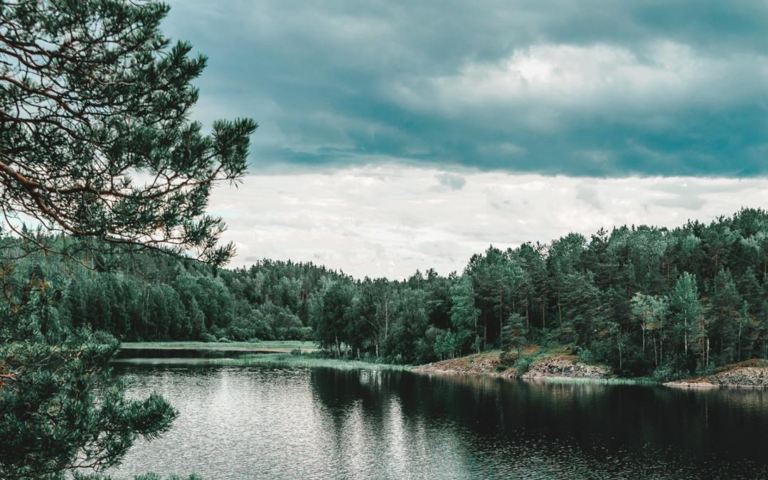Nopef-rahastosta tukea pohjoismaisille ympäristöratkaisuille