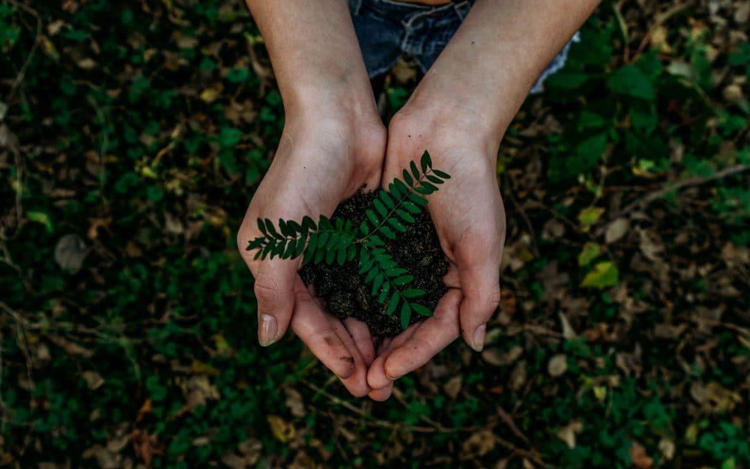 Kierrätys- ja uudelleenkäyttöinvestointien rahoitushaku alkaa 15.9.2021